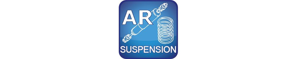 Suspension Arrière